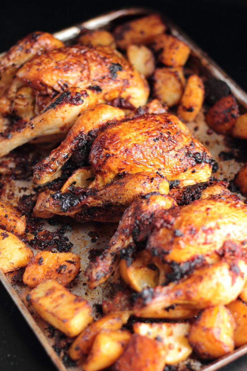 harissa roasted poussin